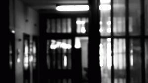 Percorsi laboratoriali dell'Associazione Culturale VED per la Promozione Cinematografica sociale e culturale